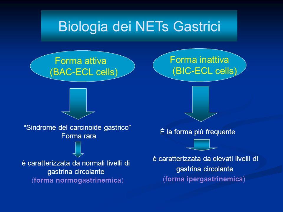 1.- Tipo 1: tumore associato a gastrite cronica atrofica.