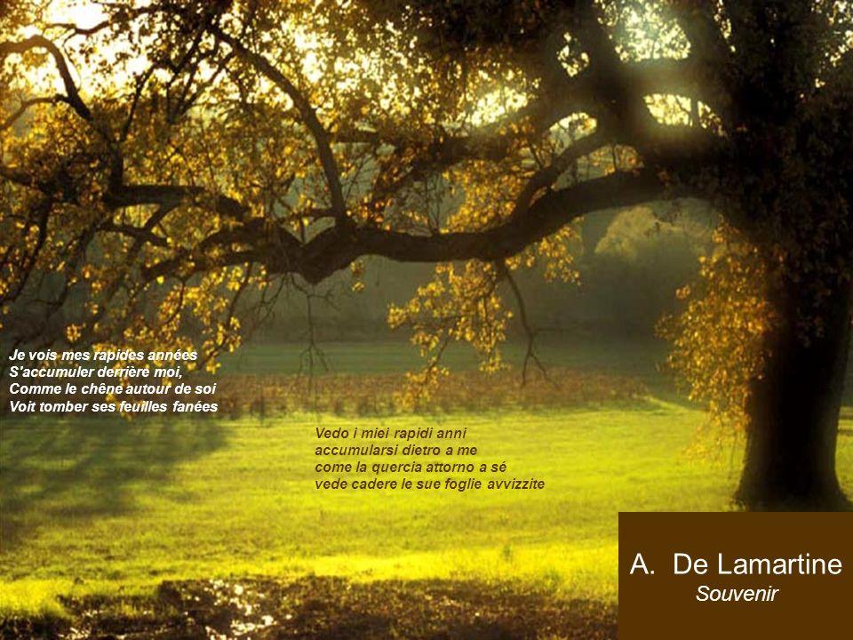 A.De Lamartine Souvenir Je vois mes rapides années S'accumuler derrière moi, Comme le chêne autour de soi Voit tomber ses feuilles fanées. Vedo i miei