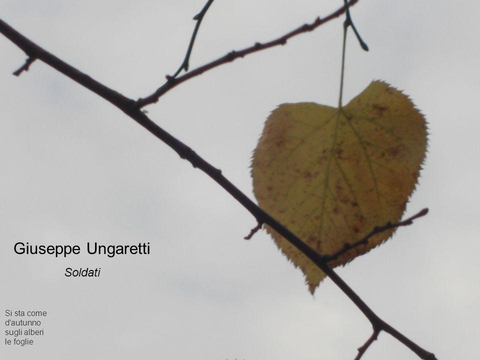 Giuseppe Ungaretti Soldati Si sta come d'autunno sugli alberi le foglie