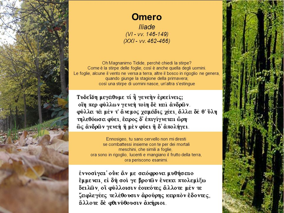 Omero Odissea (IX - vv.