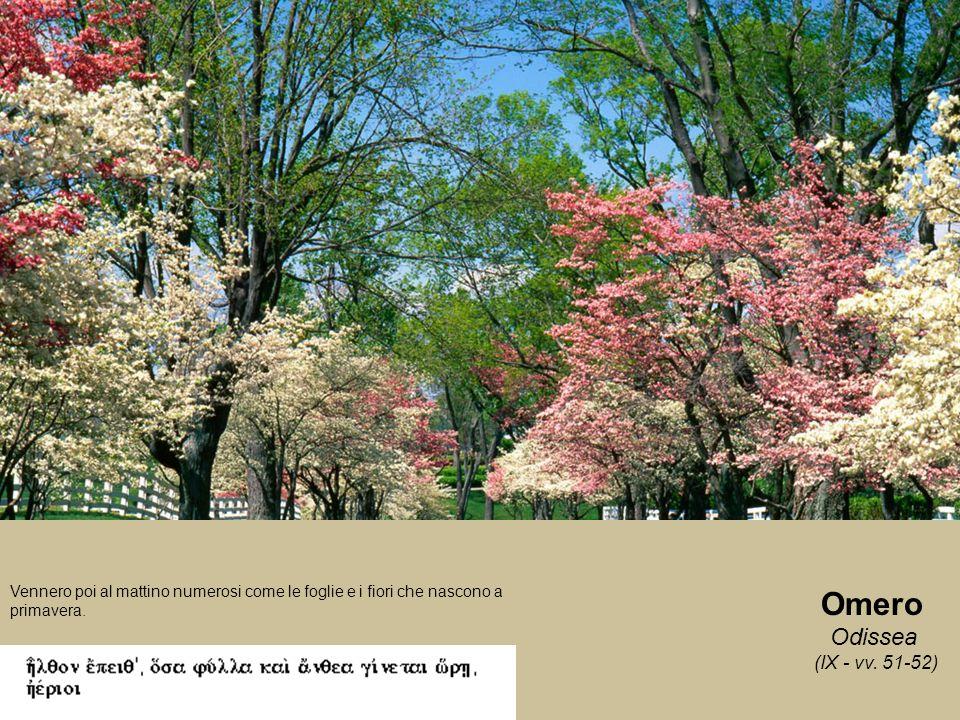 Omero Odissea (IX - vv. 51-52) Vennero poi al mattino numerosi come le foglie e i fiori che nascono a primavera.