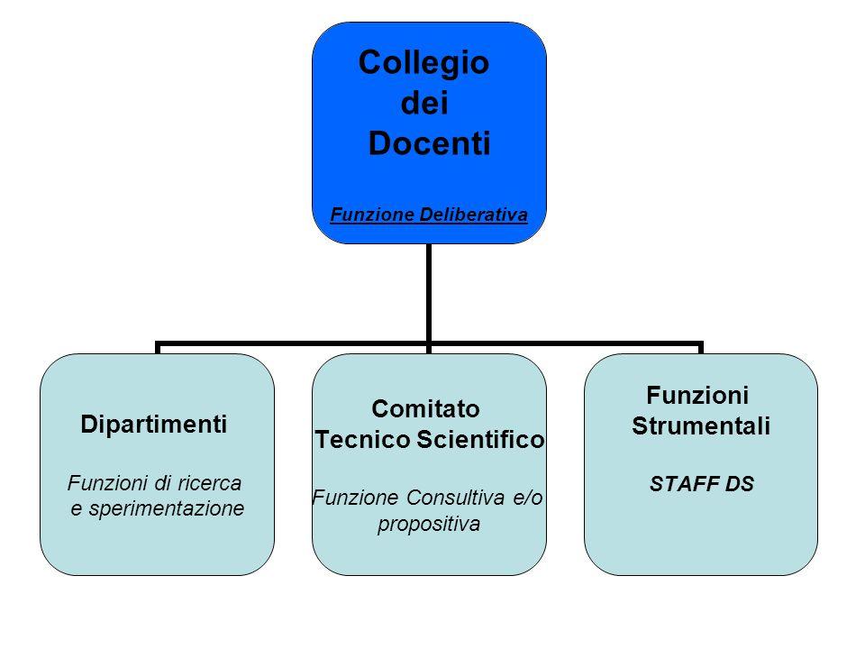 Collegio dei Docenti Funzione Deliberativa Dipartimenti Funzioni di ricerca e sperimentazione Comitato Tecnico Scientifico Funzione Consultiva e/o propositiva Funzioni Strumentali STAFF DS