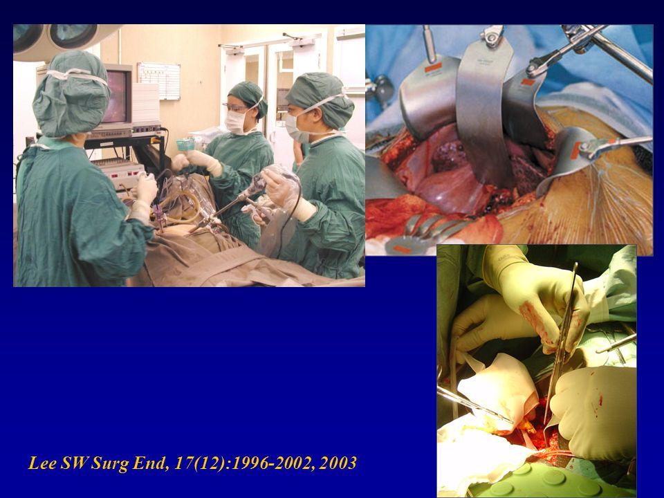 Lee SW Surg End, 17(12):1996-2002, 2003