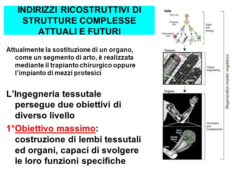 INDIRIZZI RICOSTRUTTIVI DI STRUTTURE COMPLESSE ATTUALI E FUTURI Attualmente la sostituzione di un organo, come un segmento di arto, è realizzata media