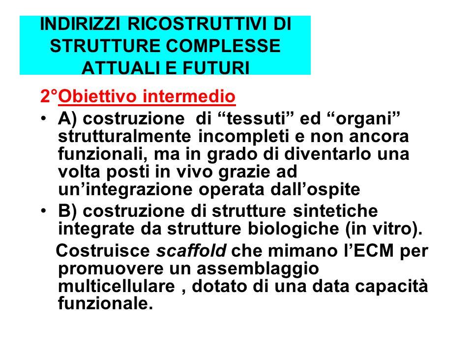 INDIRIZZI RICOSTRUTTIVI DI STRUTTURE COMPLESSE ATTUALI E FUTURI 2°Obiettivo intermedio A) costruzione di tessuti ed organi strutturalmente incompleti