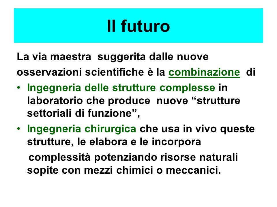 Il futuro La via maestra suggerita dalle nuove osservazioni scientifiche è la combinazione di Ingegneria delle strutture complesse in laboratorio che