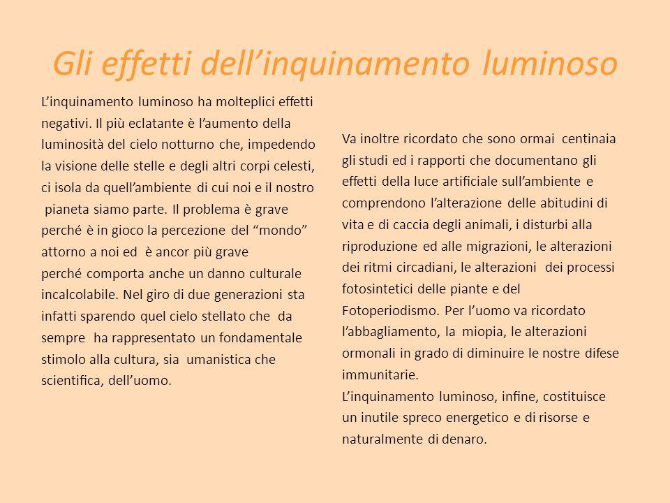 Gli effetti dellinquinamento luminoso Linquinamento luminoso ha molteplici effetti negativi.