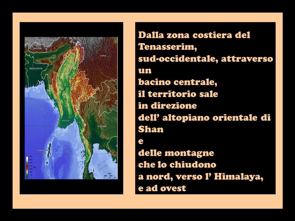 Dalla zona costiera del Tenasserim, sud-occidentale, attraverso un bacino centrale, il territorio sale in direzione dell altopiano orientale di Shan e delle montagne che lo chiudono a nord, verso l Himalaya, e ad ovest