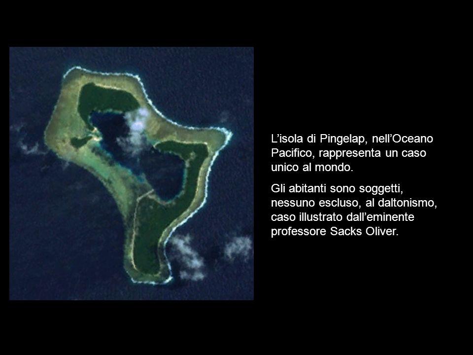 Lisola di Pingelap, nellOceano Pacifico, rappresenta un caso unico al mondo. Gli abitanti sono soggetti, nessuno escluso, al daltonismo, caso illustra