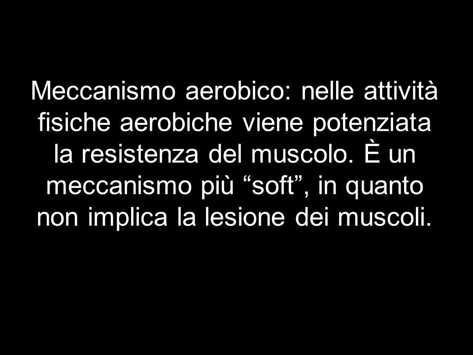 Meccanismo aerobico: nelle attività fisiche aerobiche viene potenziata la resistenza del muscolo. È un meccanismo più soft, in quanto non implica la l