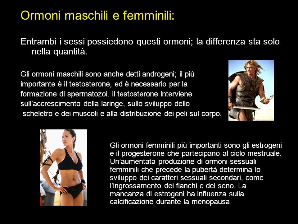 Ormoni maschili e femminili: Entrambi i sessi possiedono questi ormoni; la differenza sta solo nella quantità. Gli ormoni maschili sono anche detti an