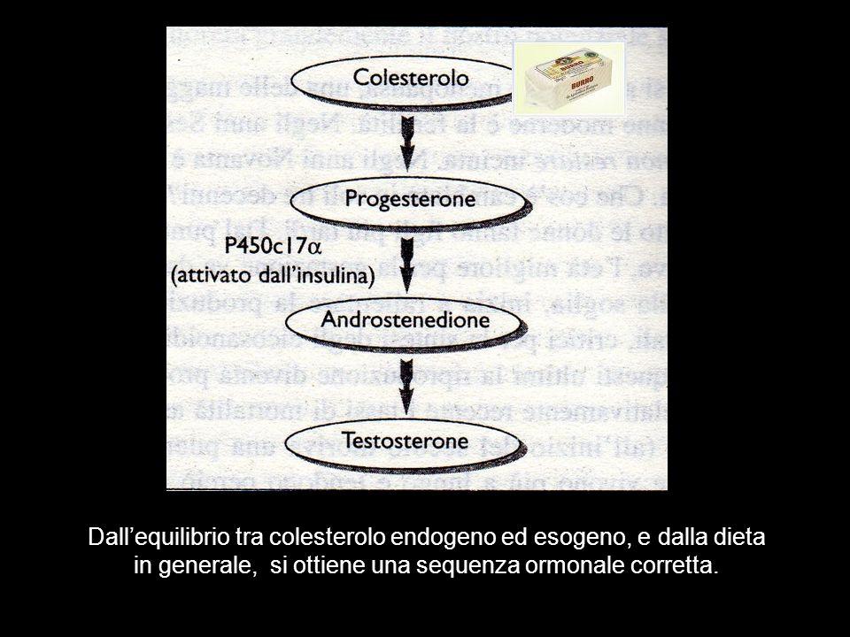 Dallequilibrio tra colesterolo endogeno ed esogeno, e dalla dieta in generale, si ottiene una sequenza ormonale corretta.