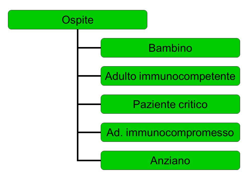Ospite Bambino Adulto immunocompetente Paziente critico Ad. immunocompromesso Anziano