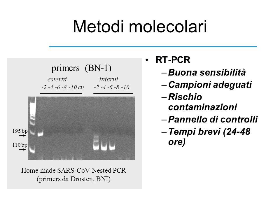 Metodi molecolari RT-PCR –Buona sensibilità –Campioni adeguati –Rischio contaminazioni –Pannello di controlli –Tempi brevi (24-48 ore) primers (BN-1)