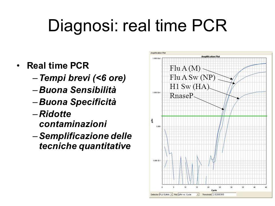 Diagnosi: real time PCR Flu A (M) Flu A Sw (NP) H1 Sw (HA) RnaseP Real time PCR –Tempi brevi (<6 ore) –Buona Sensibilità –Buona Specificità –Ridotte c