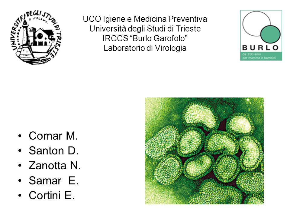 UCO Igiene e Medicina Preventiva Università degli Studi di Trieste IRCCS Burlo Garofolo Laboratorio di Virologia Comar M. Santon D. Zanotta N. Samar E