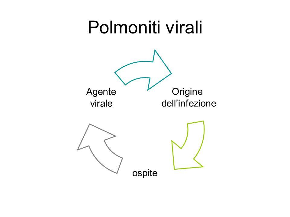 Polmoniti virali Origine dellinfezione ospite Agente virale