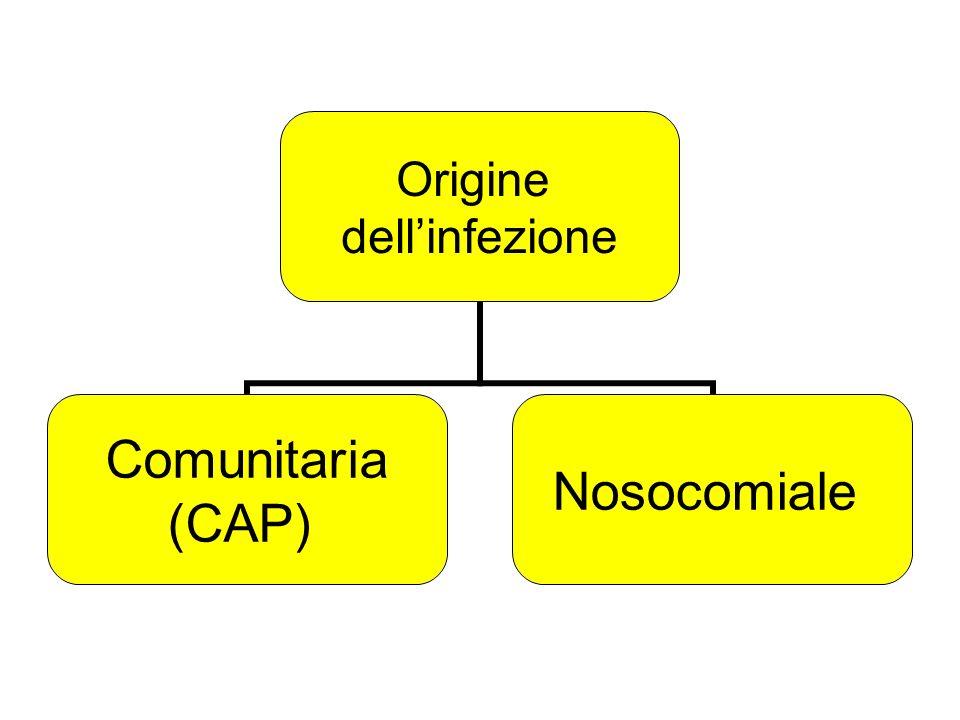 Origine dellinfezione Comunitaria (CAP) Nosocomiale