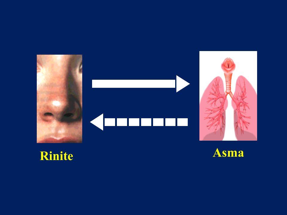 Rinite - Sinusite Asma bronchiale Stimolazione allergenica bronchiale Eosinofili IL-5 Basofili Degranulazione mastocitaria Eosinofili ICAM-1 VCAM-1 Stimolazione allergenica nasale Riflesso naso-bronchi Allergene Gocciolamento retronasale Citochine Perdita della funzione filtrante Infezione virale Midollo osseo Precursori