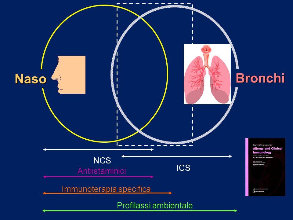 Naso Bronchi Antiistaminici Profilassi ambientale Immunoterapia specifica NCS ICS