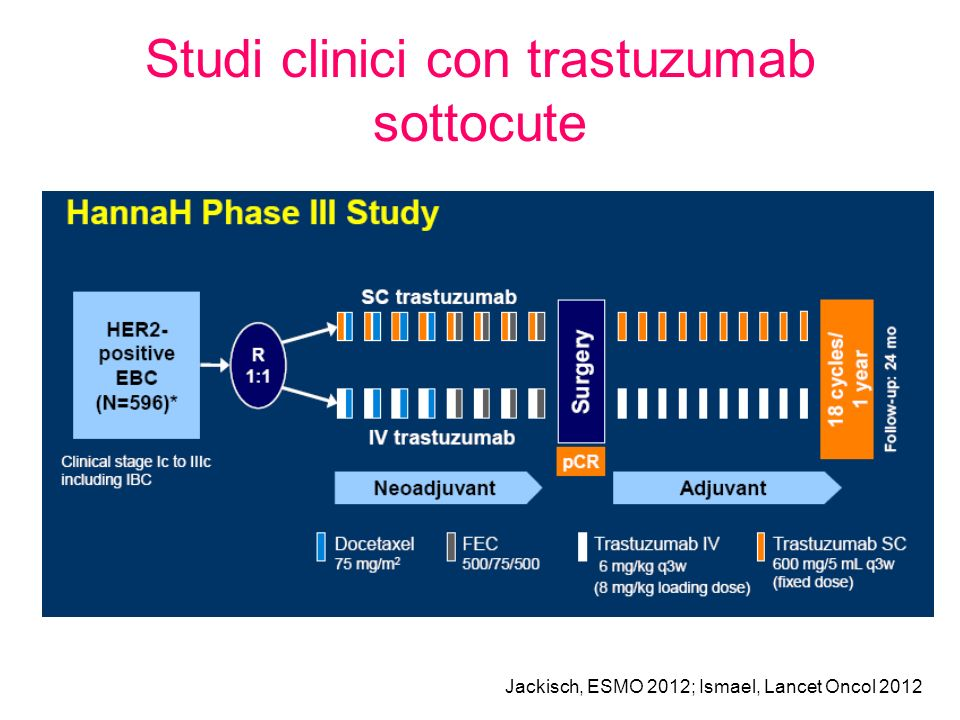 Studi clinici con trastuzumab sottocute Jackisch, ESMO 2012; Ismael, Lancet Oncol 2012