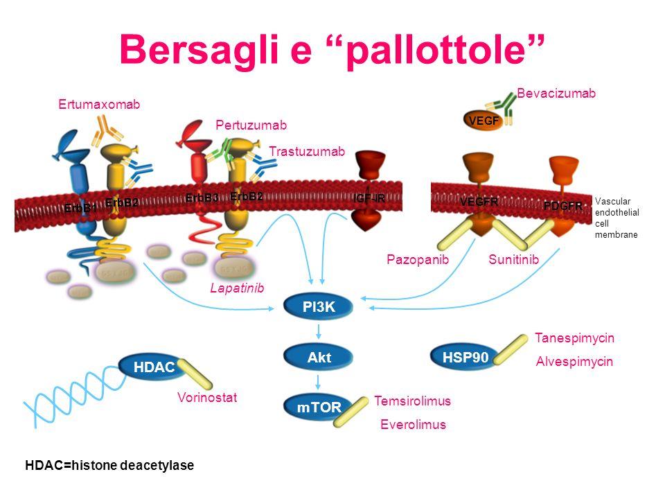 HDAC=histone deacetylase PI3K mTOR Akt Lapatinib Trastuzumab ErbB3 ErbB2 ErbB1 ErbB2 Pertuzumab IGF-IR Pazopanib Bevacizumab Ertumaxomab HSP90 Tanespi