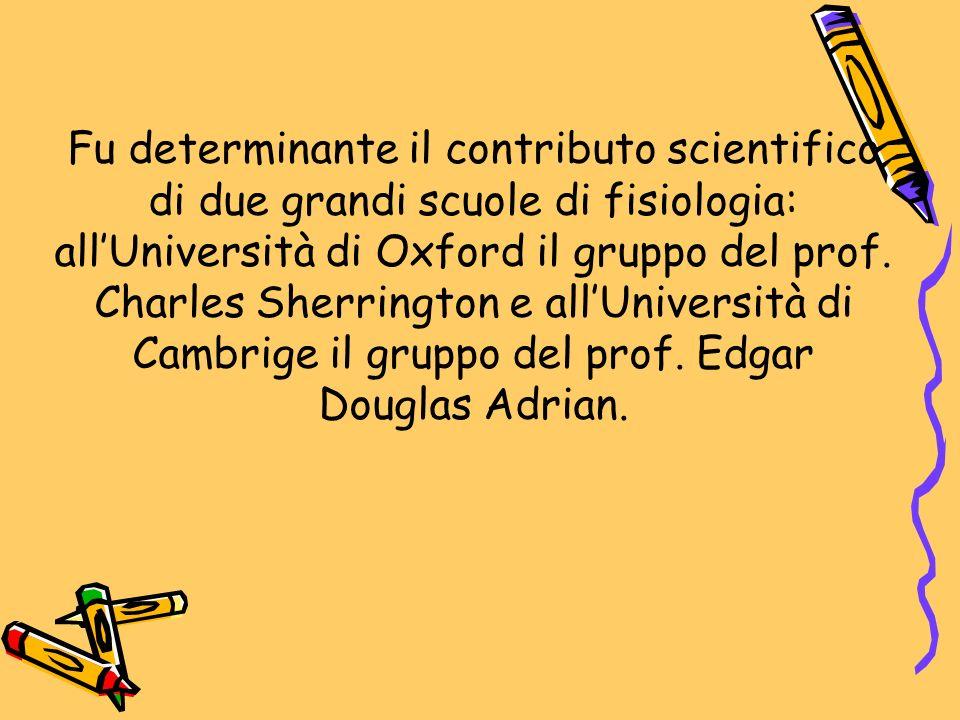 Fu determinante il contributo scientifico di due grandi scuole di fisiologia: allUniversità di Oxford il gruppo del prof. Charles Sherrington e allUni