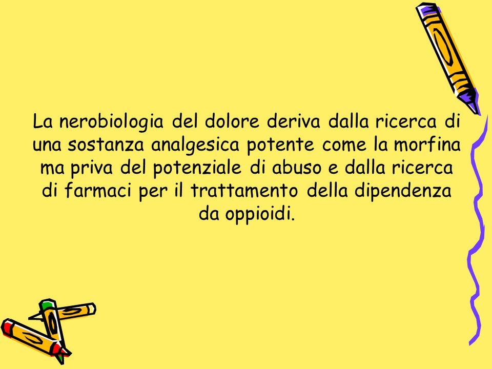 La nerobiologia del dolore deriva dalla ricerca di una sostanza analgesica potente come la morfina ma priva del potenziale di abuso e dalla ricerca di