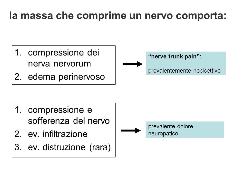 la massa che comprime un nervo comporta: 1.compressione dei nerva nervorum 2.edema perinervoso 1.compressione e sofferenza del nervo 2.ev. infiltrazio