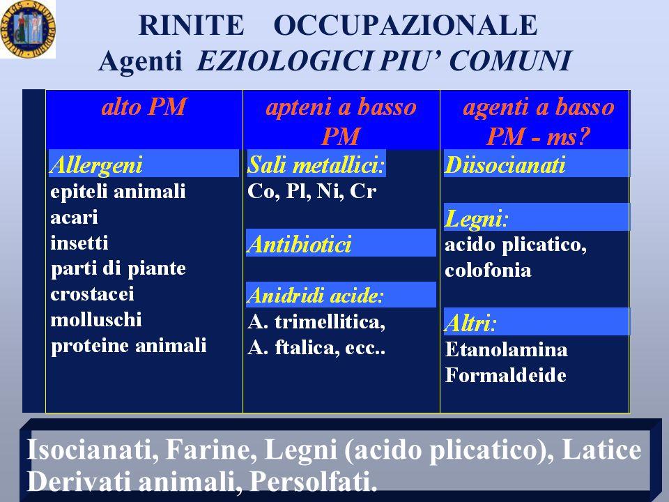 RINITE OCCUPAZIONALE Agenti EZIOLOGICI PIU COMUNI Isocianati, Farine, Legni (acido plicatico), Latice Derivati animali, Persolfati.