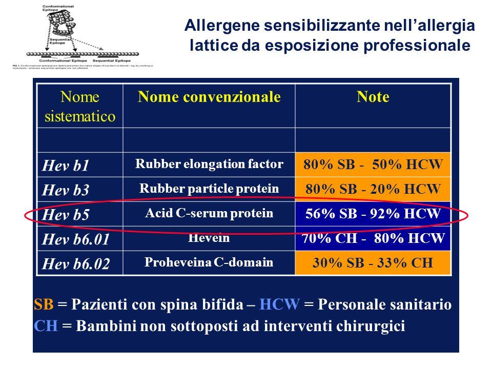 Nome sistematico Nome convenzionaleNote Hev b1 Rubber elongation factor 80% SB - 50% HCW Hev b3 Rubber particle protein 80% SB - 20% HCW Hev b5 Acid C-serum protein 56% SB - 92% HCW Hev b6.01 Hevein 70% CH - 80% HCW Hev b6.02 Proheveina C-domain 30% SB - 33% CH SB = Pazienti con spina bifida – HCW = Personale sanitario CH = Bambini non sottoposti ad interventi chirurgici Allergene sensibilizzante nellallergia lattice da esposizione professionale