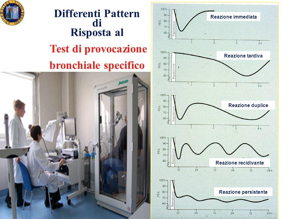 Differenti Pattern di Risposta al Test di provocazione bronchiale specifico Reazione immediata Reazione tardiva Reazione duplice Reazione recidivante Reazione persistente