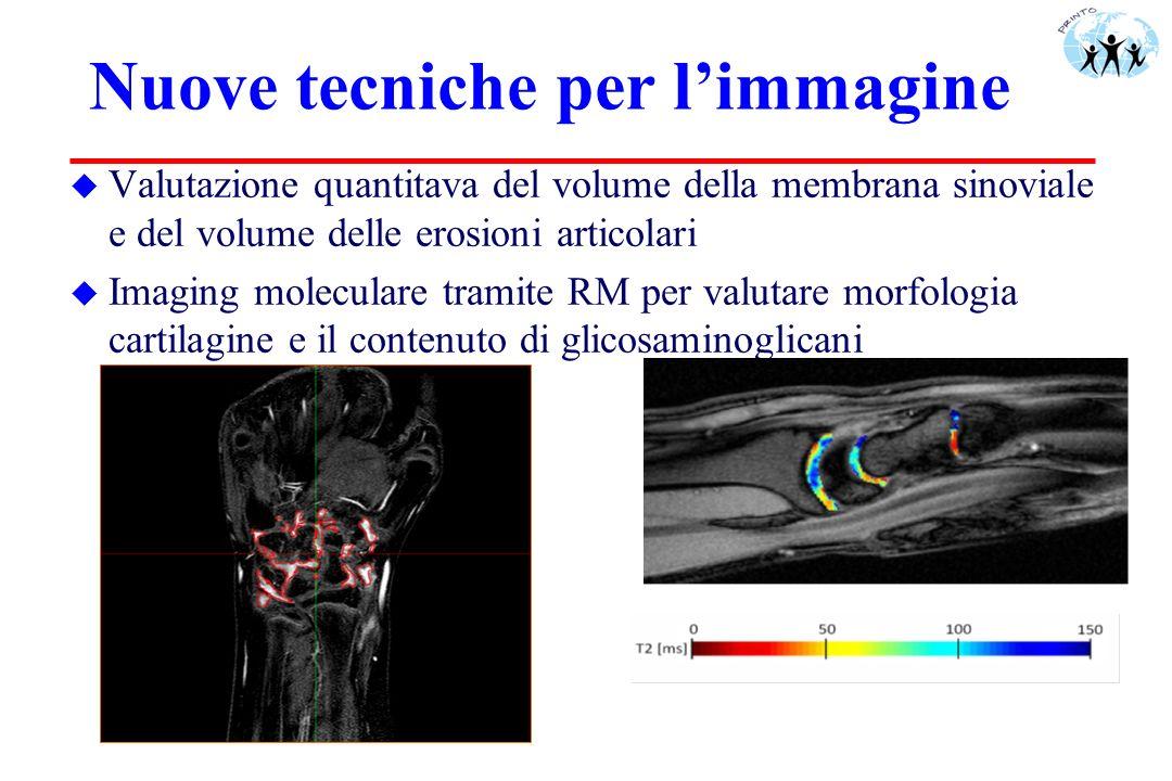 Nuove tecniche per limmagine u Valutazione quantitava del volume della membrana sinoviale e del volume delle erosioni articolari u Imaging moleculare
