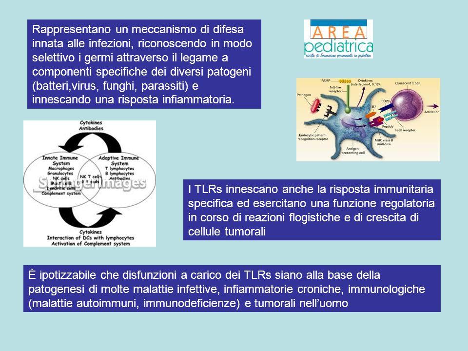 È ipotizzabile che disfunzioni a carico dei TLRs siano alla base della patogenesi di molte malattie infettive, infiammatorie croniche, immunologiche (