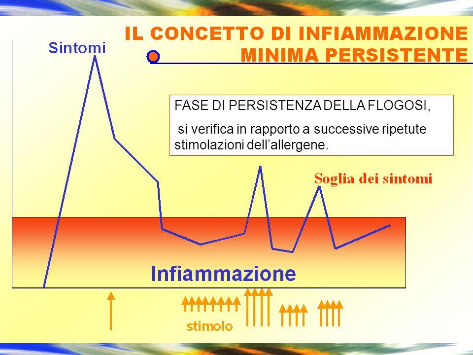 FASE DI PERSISTENZA DELLA FLOGOSI, si verifica in rapporto a successive ripetute stimolazioni dellallergene.