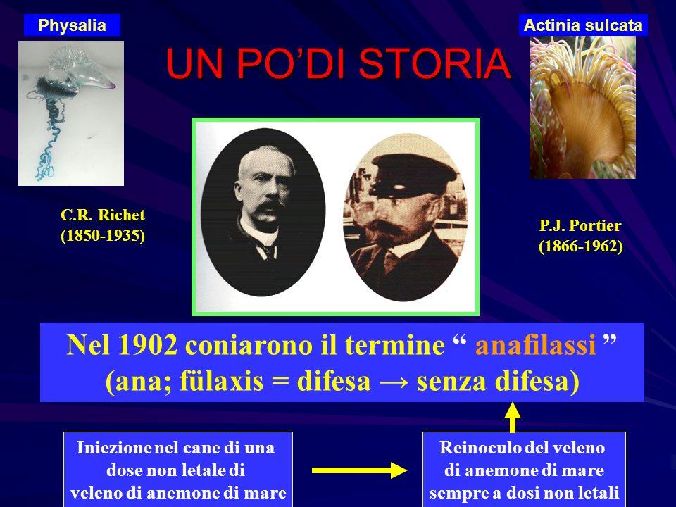 UN PODI STORIA C.R. Richet (1850-1935) P.J. Portier (1866-1962) Nel 1902 coniarono il termine anafilassi (ana; fülaxis = difesa senza difesa) Iniezion