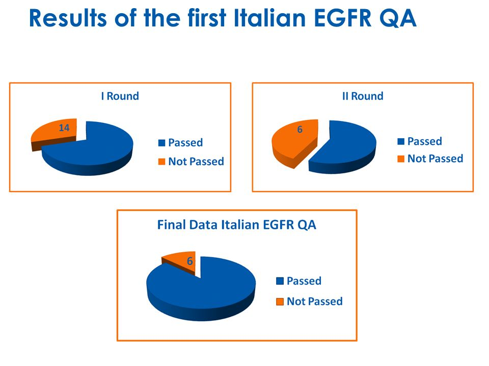 Results of the first Italian EGFR QA