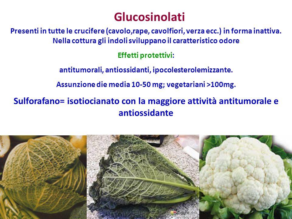 Glucosinolati Presenti in tutte le crucifere (cavolo,rape, cavolfiori, verza ecc.) in forma inattiva.