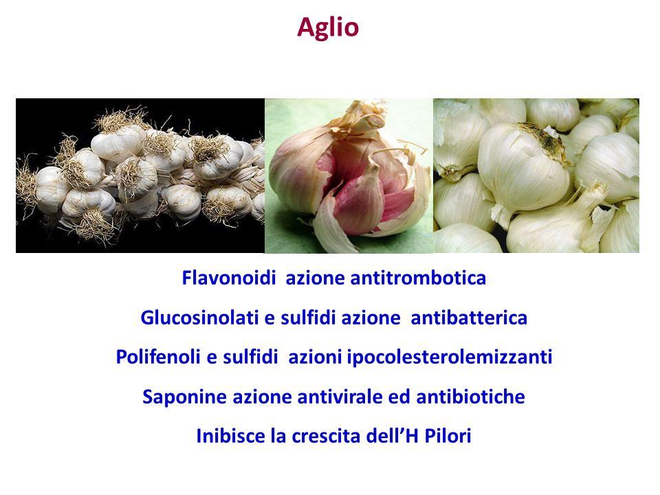 Aglio Flavonoidi azione antitrombotica Glucosinolati e sulfidi azione antibatterica Polifenoli e sulfidi azioni ipocolesterolemizzanti Saponine azione antivirale ed antibiotiche Inibisce la crescita dellH Pilori