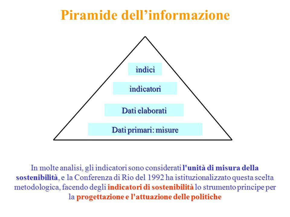 Piramide dellinformazione Dati primari: misure Dati elaborati indicatori indici In molte analisi, gli indicatori sono considerati l'unità di misura de