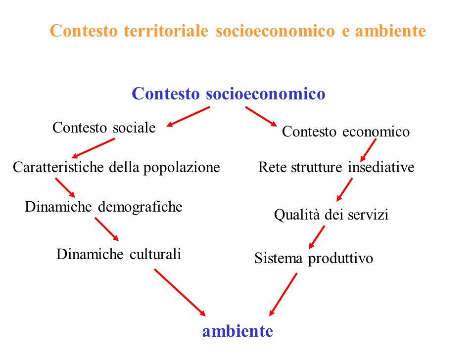 Contesto territoriale socioeconomico e ambiente Contesto socioeconomico Contesto sociale Dinamiche demografiche Sistema produttivo Caratteristiche del