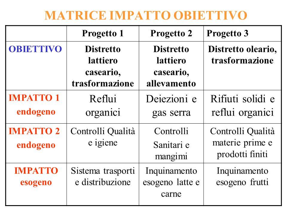 MATRICE IMPATTO OBIETTIVO Progetto 1Progetto 2Progetto 3 OBIETTIVODistretto lattiero caseario, trasformazione Distretto lattiero caseario, allevamento
