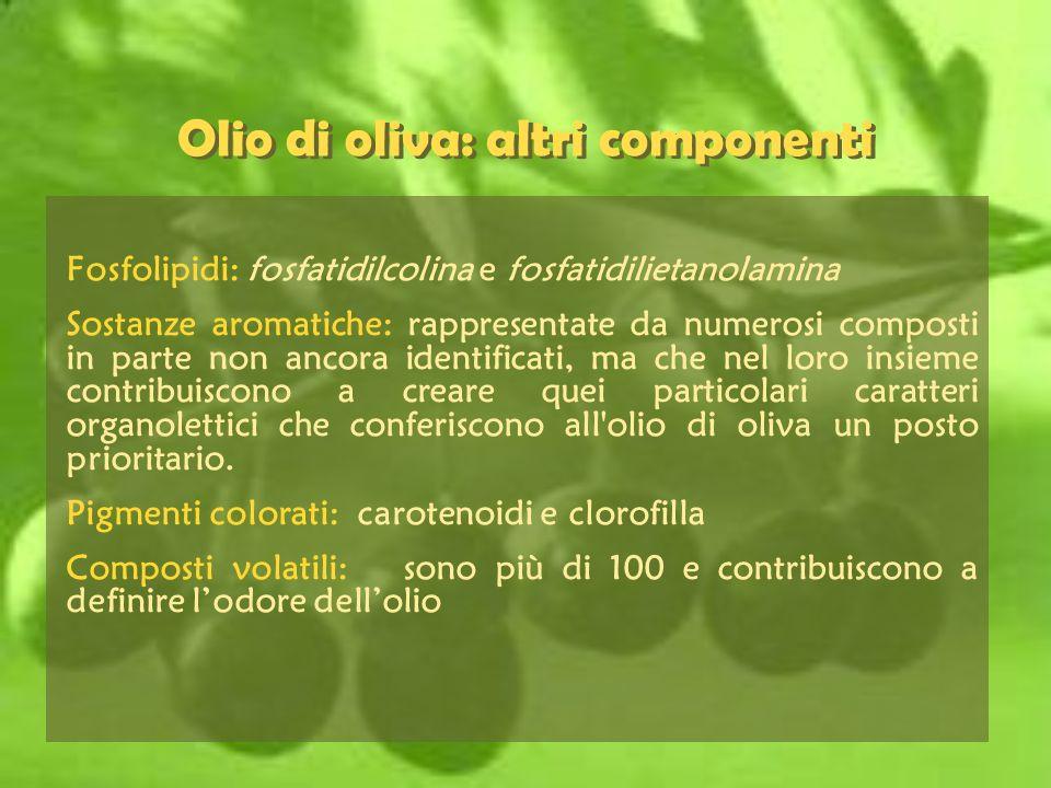 Olio di oliva: altri componenti Fosfolipidi: fosfatidilcolina e fosfatidilietanolamina Sostanze aromatiche: rappresentate da numerosi composti in part