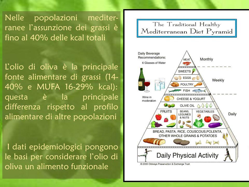 Olio d Oliva e fattori di rischio cardiovascolare Studi clinici di intervento supportano il ruolo positivo dellolio di oliva nella riduzione dei fattori di rischio cardiovascolari Leffetto protettivo è stato attribuito allelevato contenuto in MUFA Leffetto è indiretto (sostituzione di acidi grassi saturi), ma anche diretto
