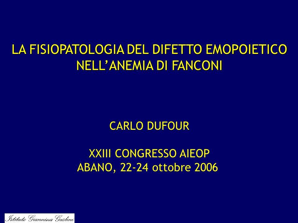 LA FISIOPATOLOGIA DEL DIFETTO EMOPOIETICO NELLANEMIA DI FANCONI CARLO DUFOUR XXIII CONGRESSO AIEOP ABANO, 22-24 ottobre 2006