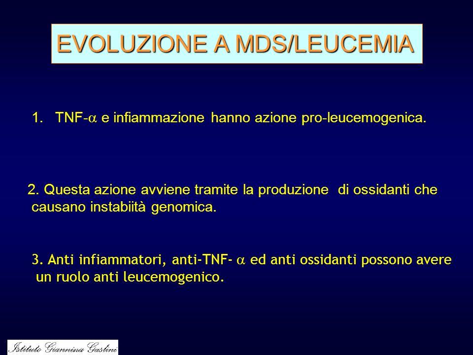 EVOLUZIONE A MDS/LEUCEMIA 1.TNF- e infiammazione hanno azione pro-leucemogenica. 2. Questa azione avviene tramite la produzione di ossidanti che causa