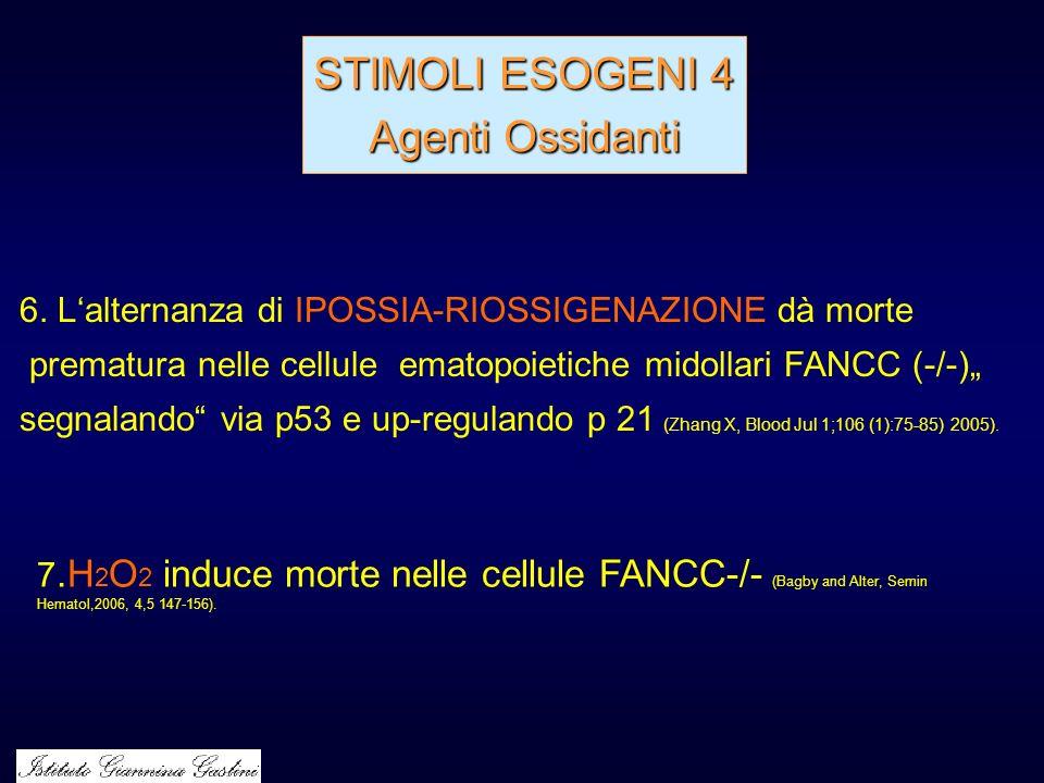 STIMOLI ESOGENI 4 Agenti Ossidanti 6. Lalternanza di IPOSSIA-RIOSSIGENAZIONE dà morte prematura nelle cellule ematopoietiche midollari FANCC (-/-) seg