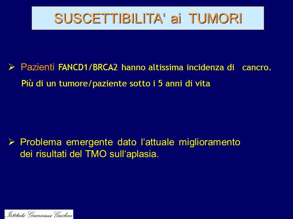SUSCETTIBILITA ai TUMORI Problema emergente dato lattuale miglioramento dei risultati del TMO sullaplasia. Pazienti FANCD1/BRCA2 hanno altissima incid