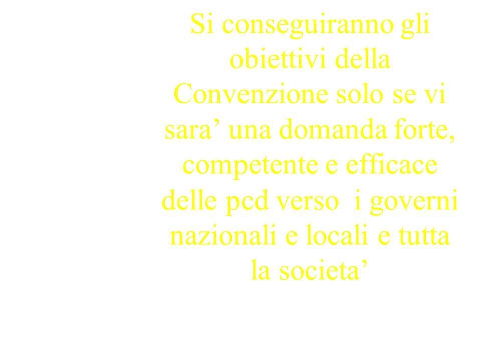 Si conseguiranno gli obiettivi della Convenzione solo se vi sara una domanda forte, competente e efficace delle pcd verso i governi nazionali e locali e tutta la societa