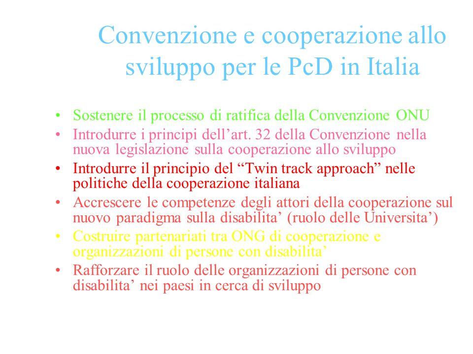 Convenzione e cooperazione allo sviluppo per le PcD in Italia Sostenere il processo di ratifica della Convenzione ONU Introdurre i principi dellart.